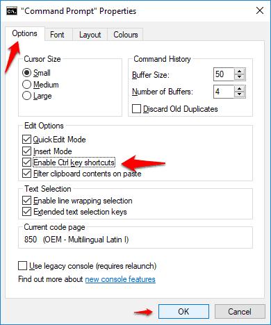 enable ctrl key shortcuts