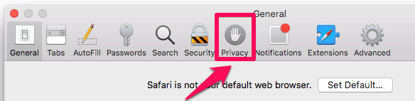 safari privacy