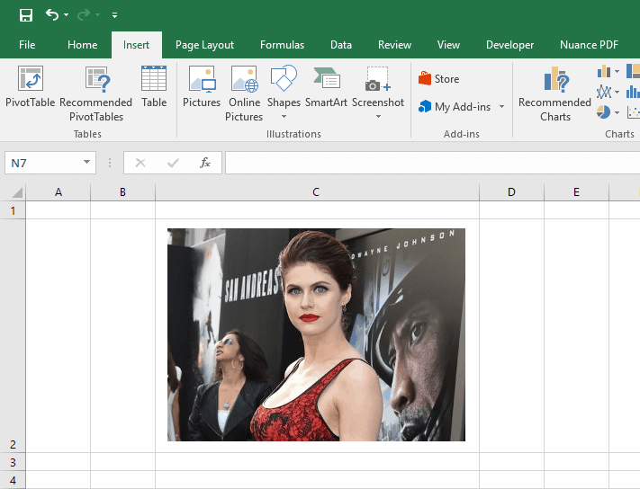 insert picture into excel cell