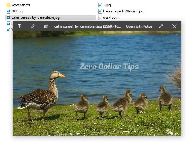 free photo viewer for windows 10