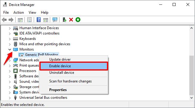 enable generic pnp monitor