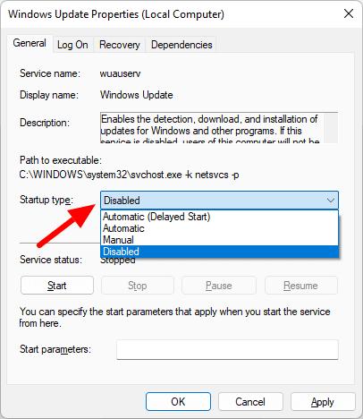 disable windows 11 auto update